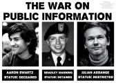 2013_schwartz_manning_assange